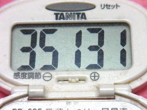 150321-291歩数計(S)