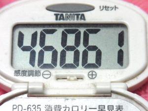 150322-291歩数計(S)