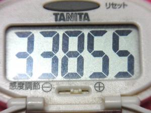 150328-291歩数計(S)