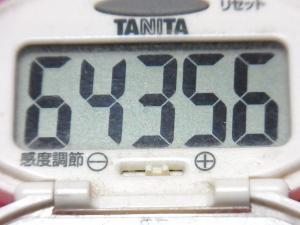 150329-291歩数計(S)