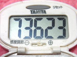 150405-291歩数計(S)