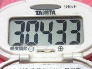 150411-291歩数計(S)