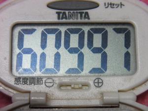 150412-291歩数計(S)
