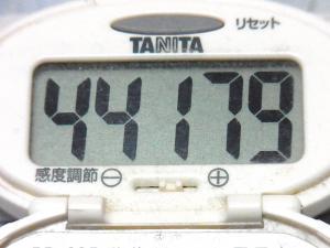 150425-291歩数計(S)