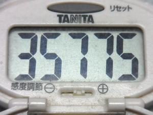 150502-291歩数計(S)