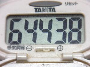 150510-291歩数計(S)