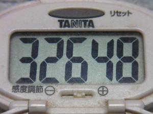 150517-291歩数計(S)