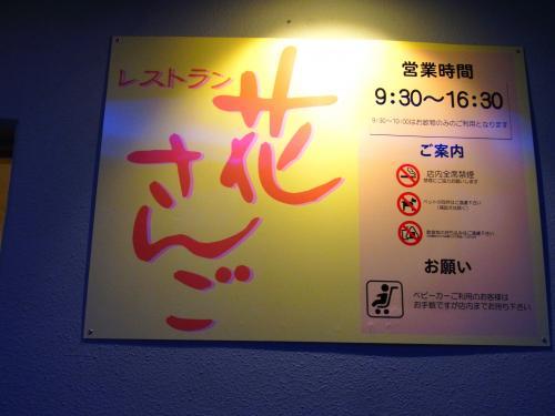 150516-101花さんご(S)