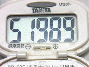 150524-291歩数計(S)
