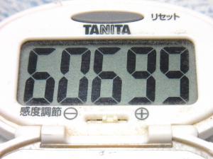 150531-291歩数計(S)