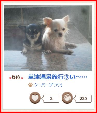 YP201508(3).jpg