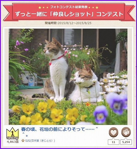 nakayoshi2015-1.jpg