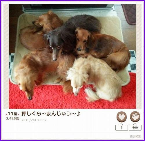nakayoshi2015-4.jpg