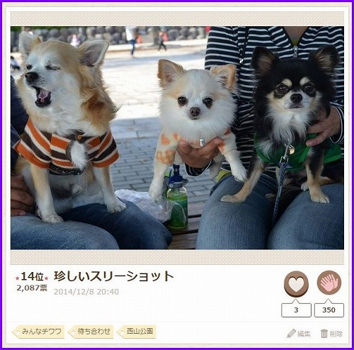 nakayoshi2015-5.jpg