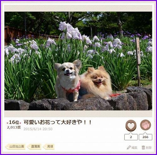 nakayoshi2015-6.jpg