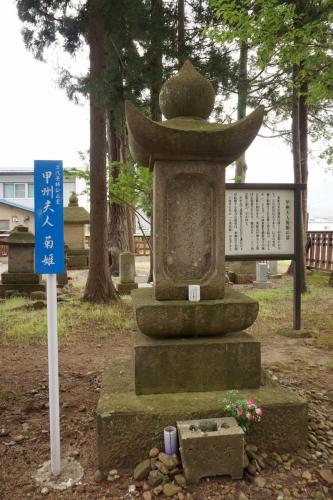 9菊りん (800x1200)