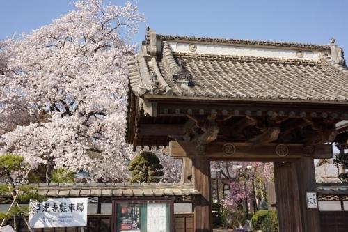 1浄光寺 (1200x800)