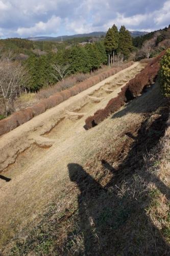 7一の堀 (800x1200)
