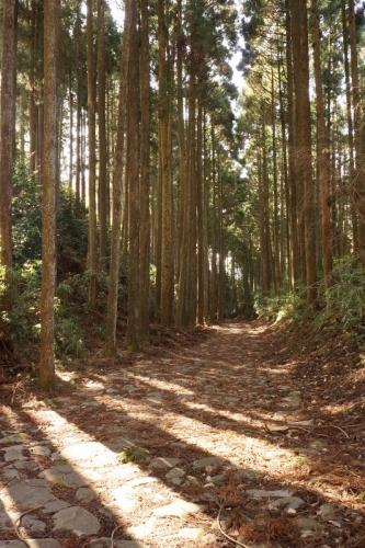 2東海道 (800x1200)