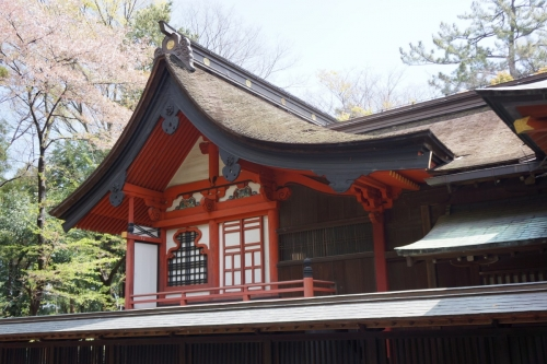 5玉村本殿 (1200x800)