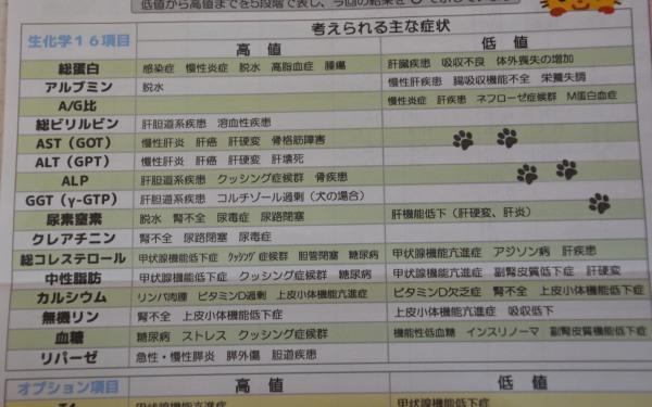 DSC_4108.jpg