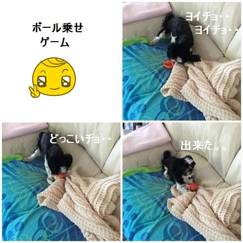page4310x4moji.jpg