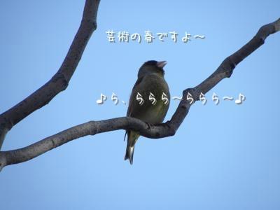 th_DSCN3866.jpg