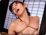 無料AVちゃんねる : 【近親相姦・葵紫穂】 息子に荒縄で縛られ股間を濡らす母!