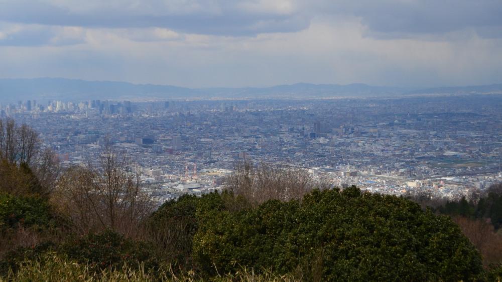 _大阪平野DSC_1433