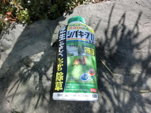 芝生の除草剤1