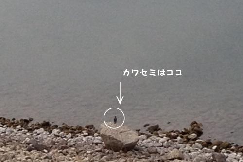 20150203_03.jpg
