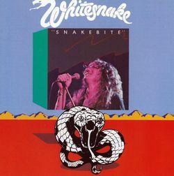 Whitesnake_2015061616244332f.jpg