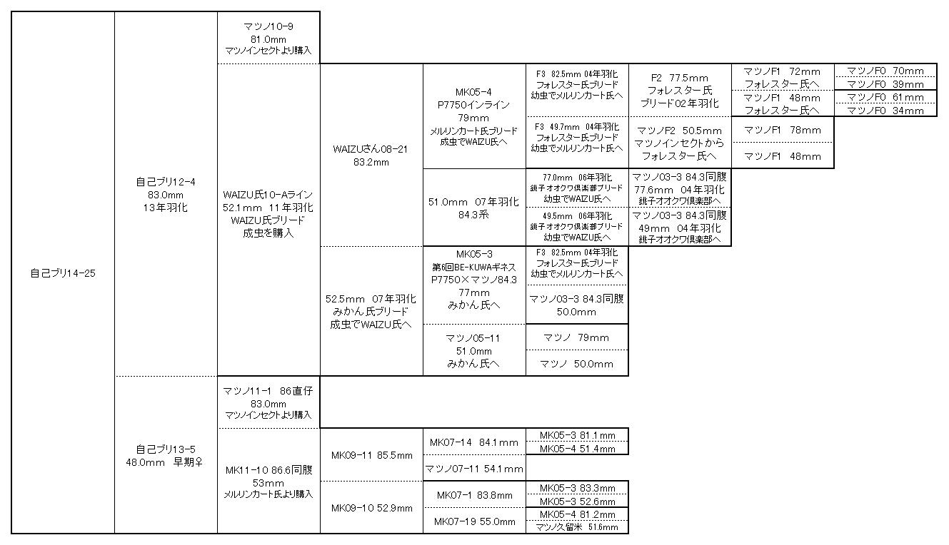 14-25背景