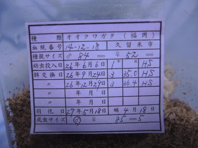 DSCN0420[1]