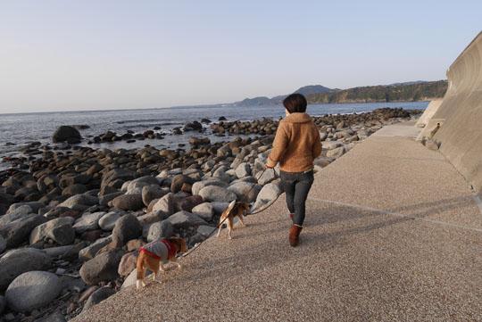 003海岸散歩