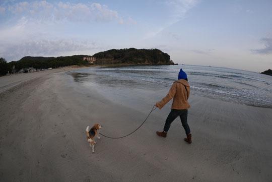 021海岸散歩3