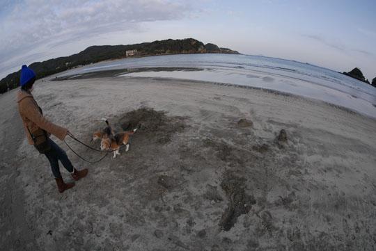 019砂浜散歩2