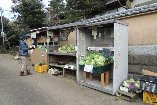 019野菜売り場