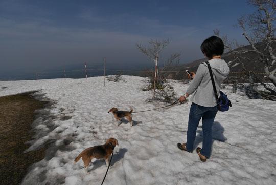 111雪の上の散歩