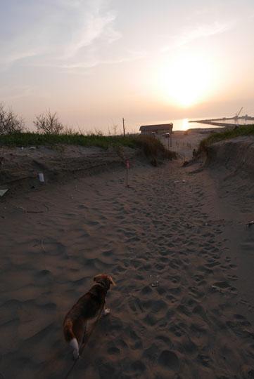 112夕日を見に海岸へ