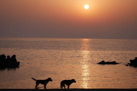 200海岸で夕日