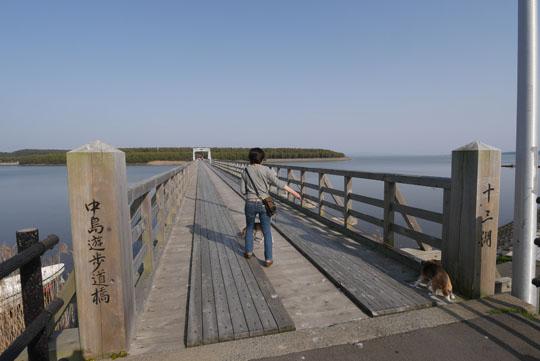 226中之島遊歩橋