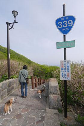 309階段国道は歩かず