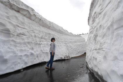412雪の壁2