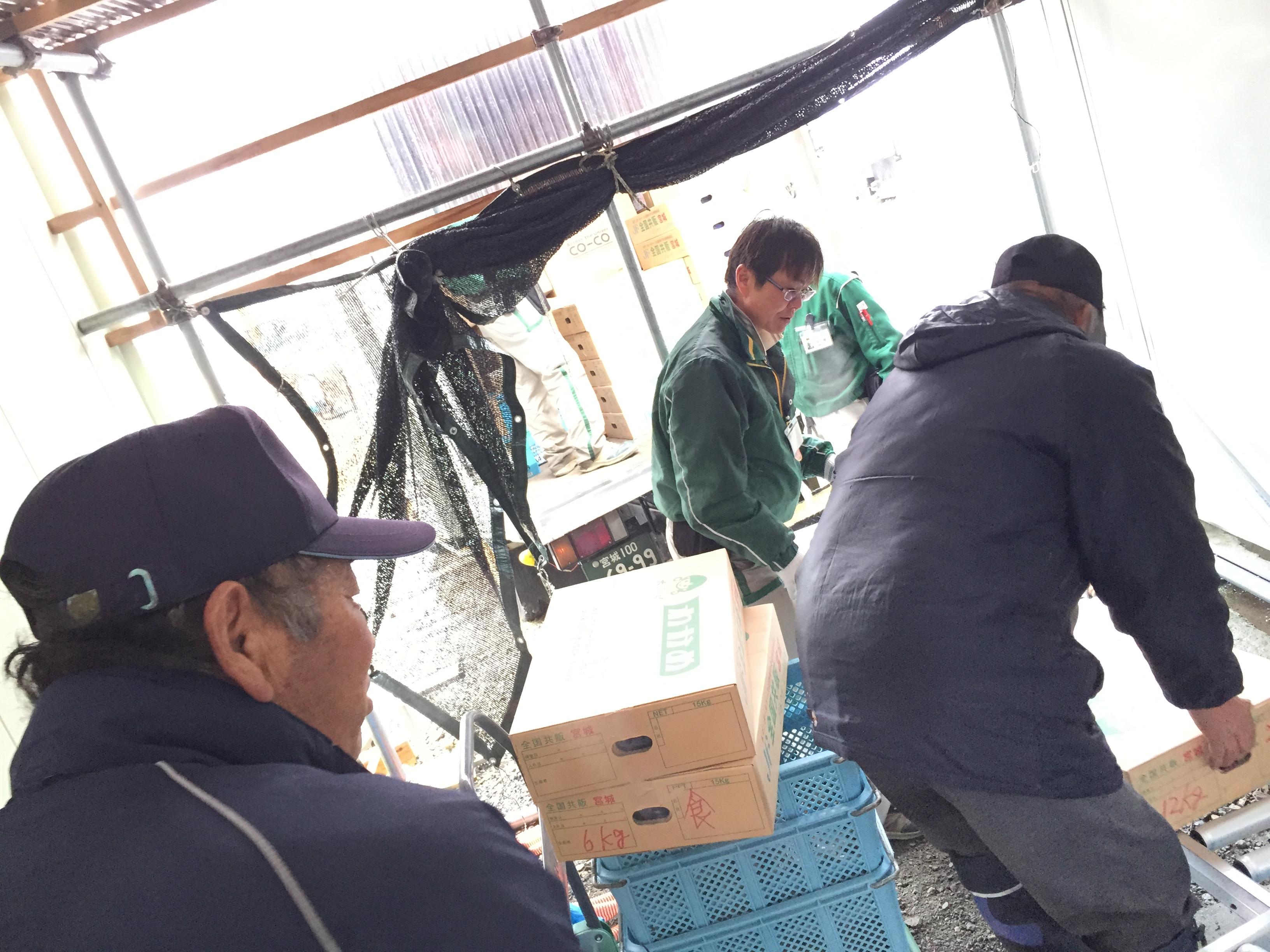 20150218ワカメ配送