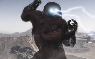 Ape(1).jpg