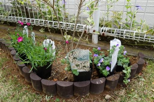 木柵 連杭 花壇