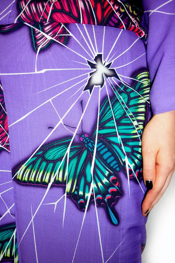broken_butterfly02.jpg
