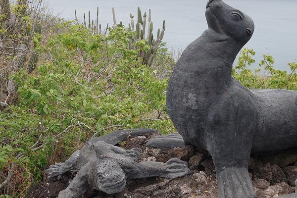 s-ガラパゴス諸島6日目 (19)