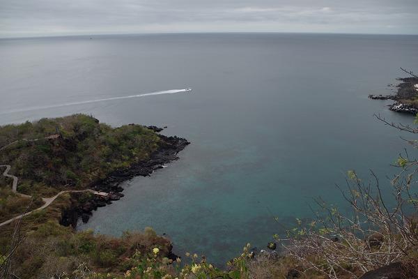 s-ガラパゴス諸島6日目 (22)